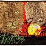Lions and sunset in Africa on the embroidered patch